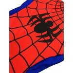 Spider Man Boys Costume For School